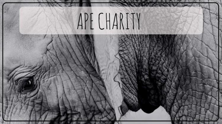 Ape Charity